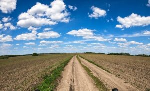 人生の歩む道